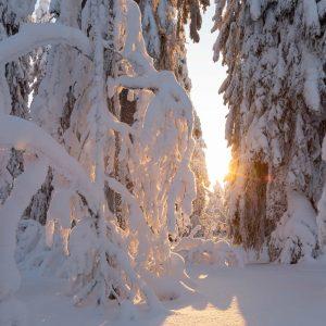 50-pienempi-snow-4787432_1920