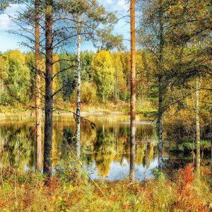 finland-185853_1920