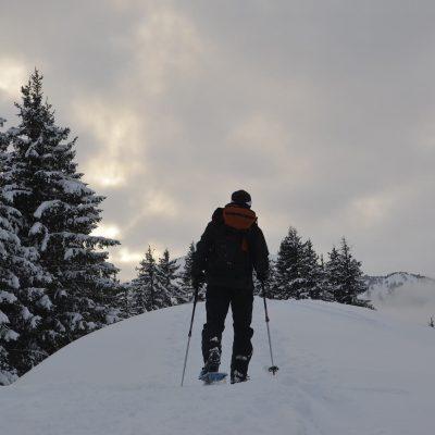 snowshoeing-2284129_1920 (1)
